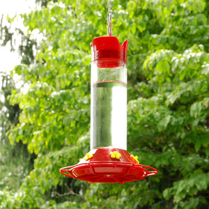 Hummningbird feeder in use