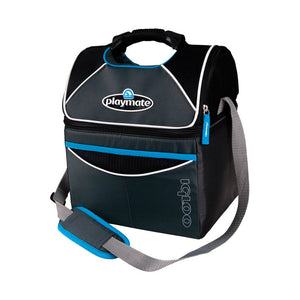 Igloo cooler bag