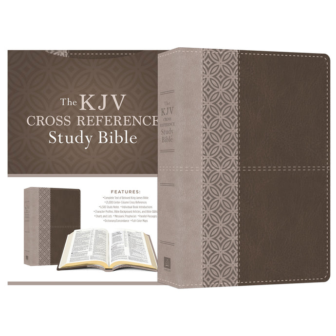 KJV cross reference study Bible in stone