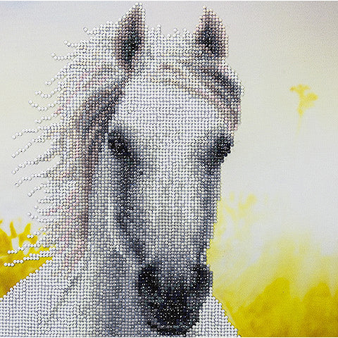Diamond Dotz Painting White Horse Kit 50461