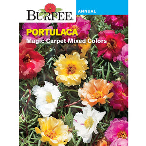 Magic Carpet Portulaca seed pack