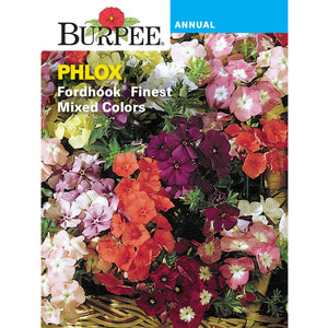 Phlox flower seed pack