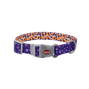Purple pet collar