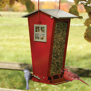 Snack Shack bird feeder