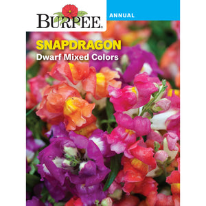Snapdragon mixed colors