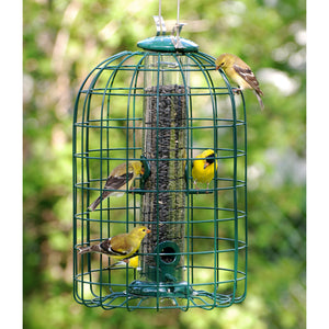 Tube bird feeder in cage