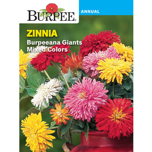 Zinnia flower seed pack