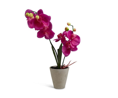 Potted Magenta Faux Orchid Light Grey - Scandinavian Designs