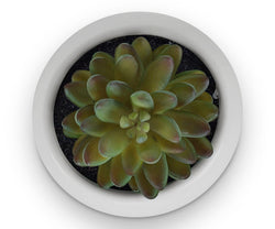 Round Pot with Faux Plant - Scandinavian Designs