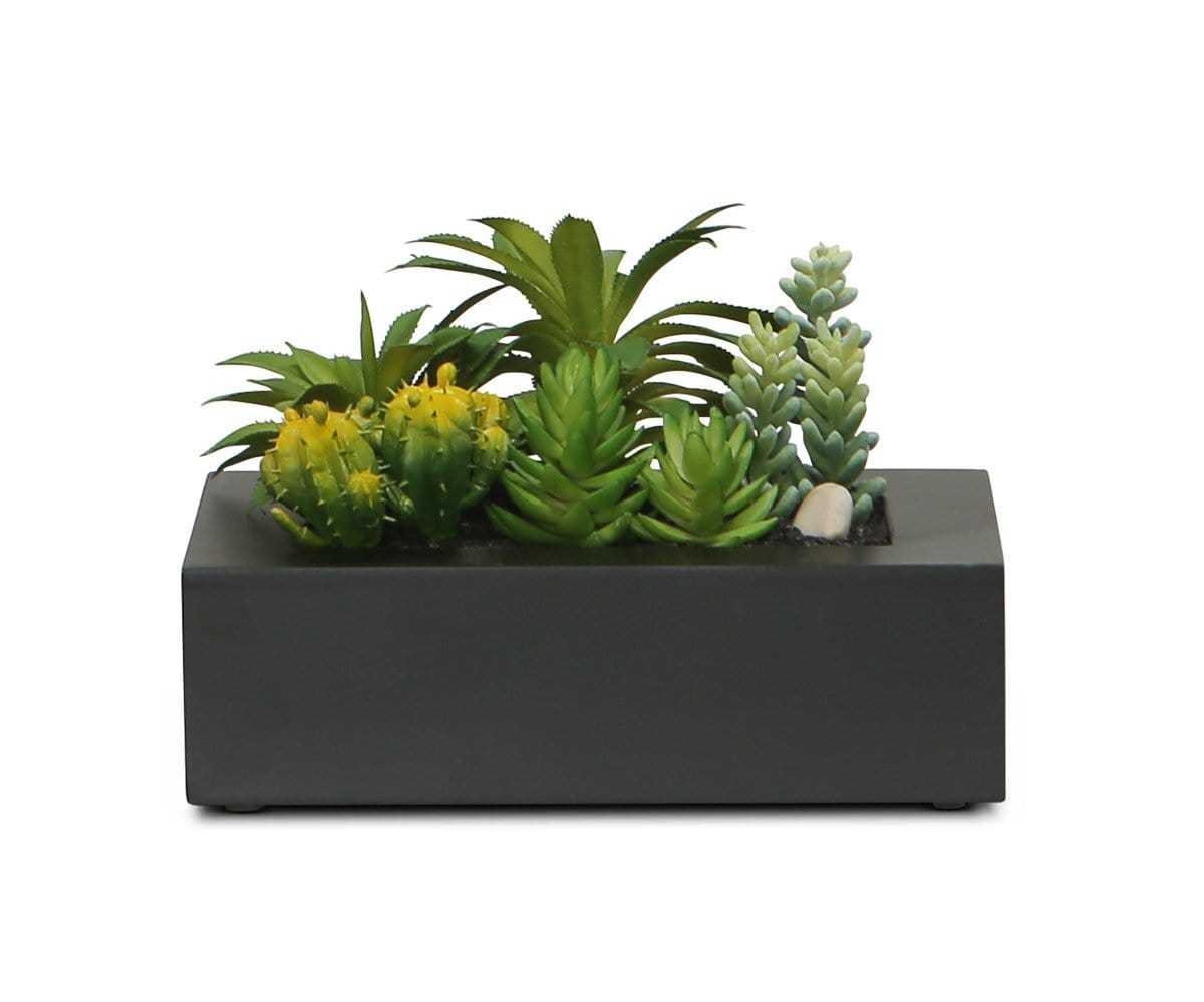 Collected Faux Succulents in Small Rectangular Planter
