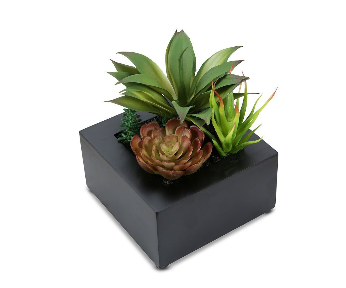 Green Faux Succulents in Square Planter Box - Scandinavian Designs
