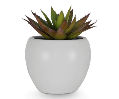 Red and Green Faux Succulent - Scandinavian Designs