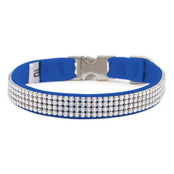 Royal Blue 4 Row Giltmore Perfect Fit Collar