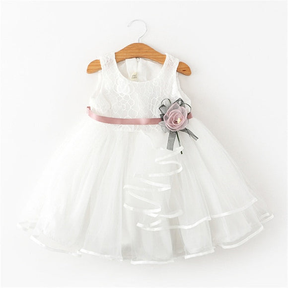 Ball Gown Birthday Dress for Baby  Girl Mini Tutu Dresses - Ophira Store