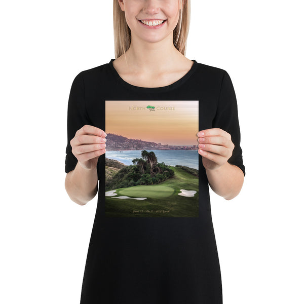 Torrey Pines Signature Hole Poster
