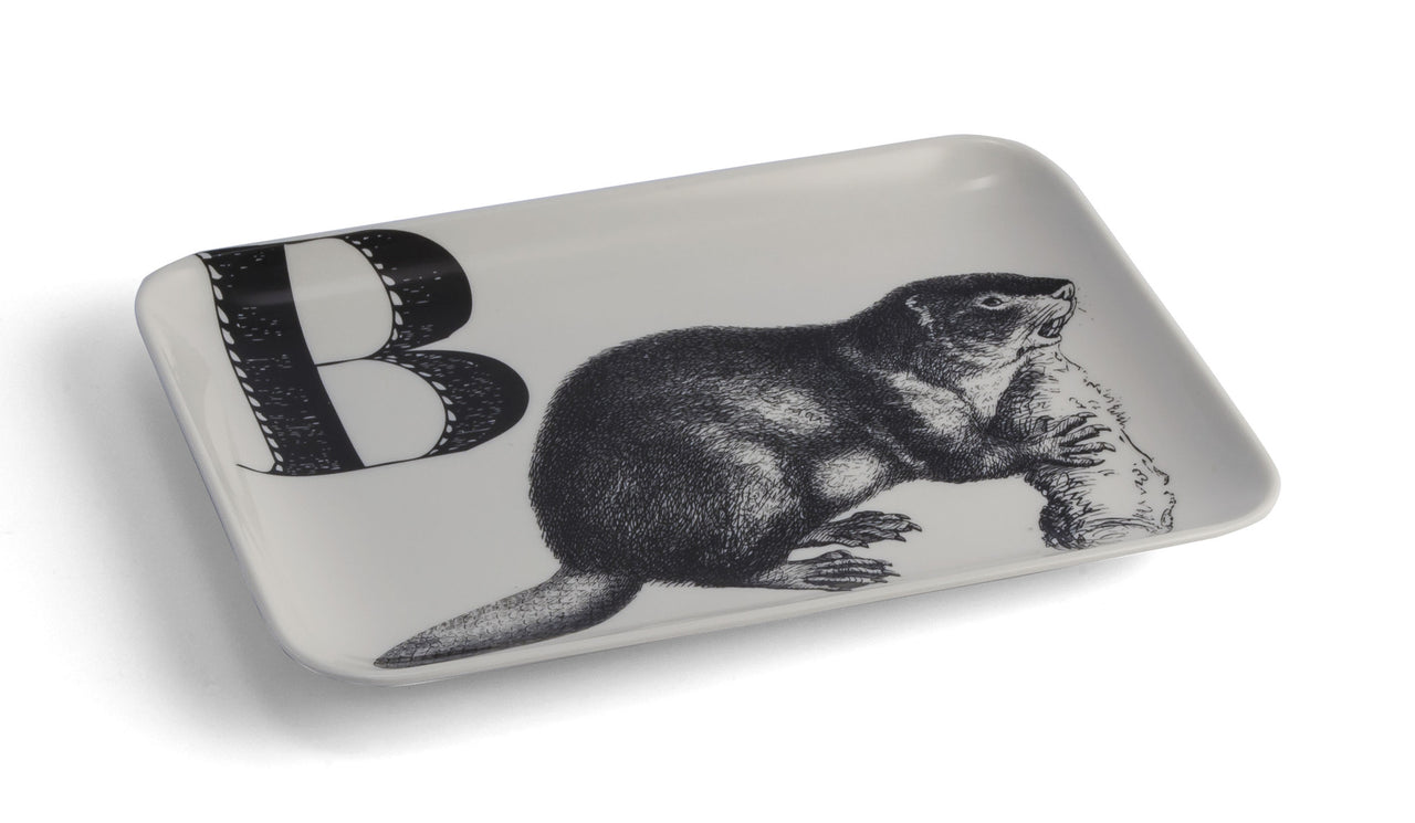 Beaver Catch-All Tray