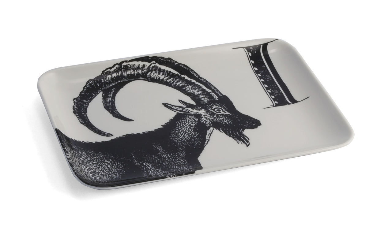 Ibex Catch-All Tray