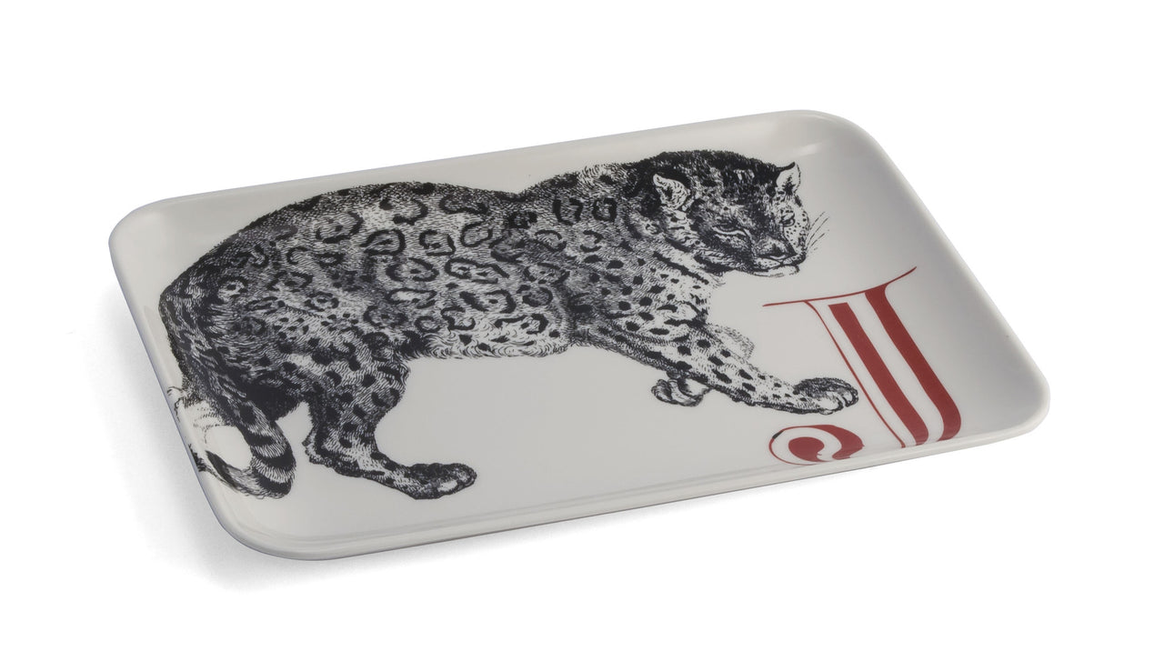 Jaguar Catch-All Tray