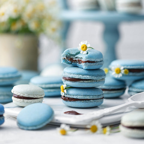 Pastel Blue Macarons with Coconut Ganache Cream