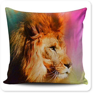 Jai Johnson Pillows - Colorful Expressions Collection 3 - 4 Designs-4