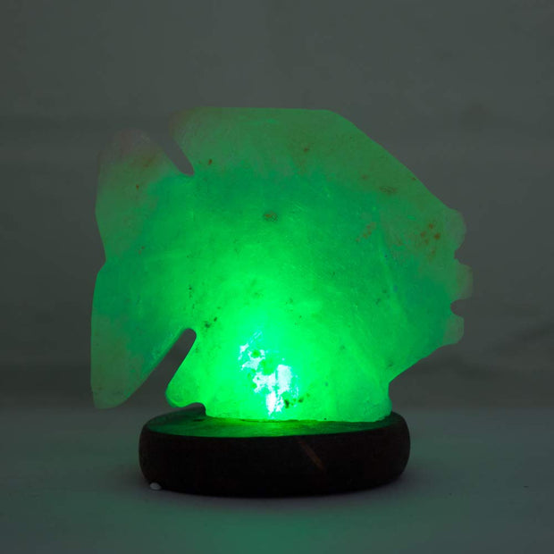 Fish shaped Colour Changing LED Salt Lamp - Klass Home