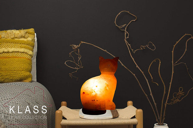 Himalayan Salt Lamp CAT Salt Lamp - Klass Home