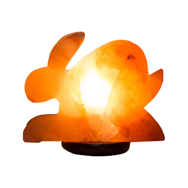 Rabbit shaped Colour Changing LED Salt Lamp - Klass Home