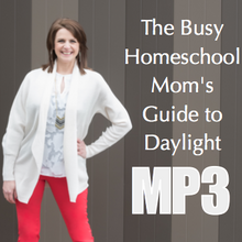 The Busy Mom's Guide to Daylight - Workshop Recording