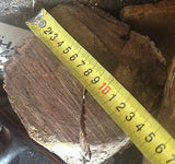 BLACKWOOD LOG 130mm x 1.5m