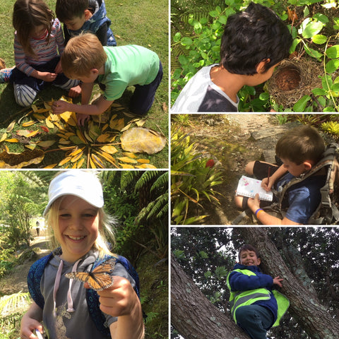 Nature Kids Weekday Sessions Mount Maunganui