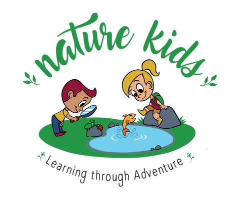 Nature kids learning through adventure weekday sessions