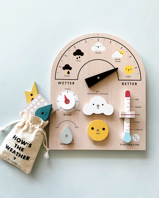 Moon Picnic Weather Station