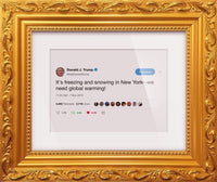 "Donald Trump - ""We Need Global Warming!""-Framed Tweets"