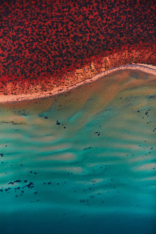 Ripples, Shark Bay, Vertical Print
