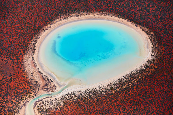 Blue Lagoon, Shark Bay, Horizontal Print