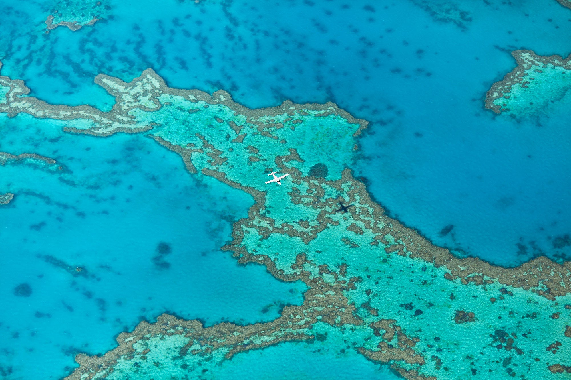 Escape, Great Barrier Reef, Horizontal Print