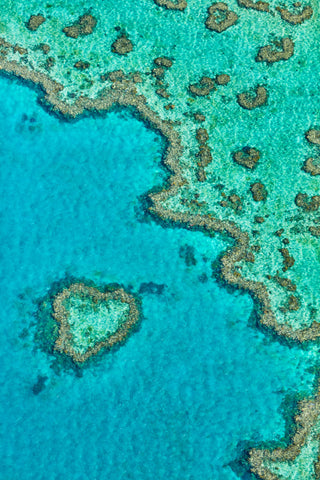 Heart Reef, Great Barrier Reef, Vertical Print