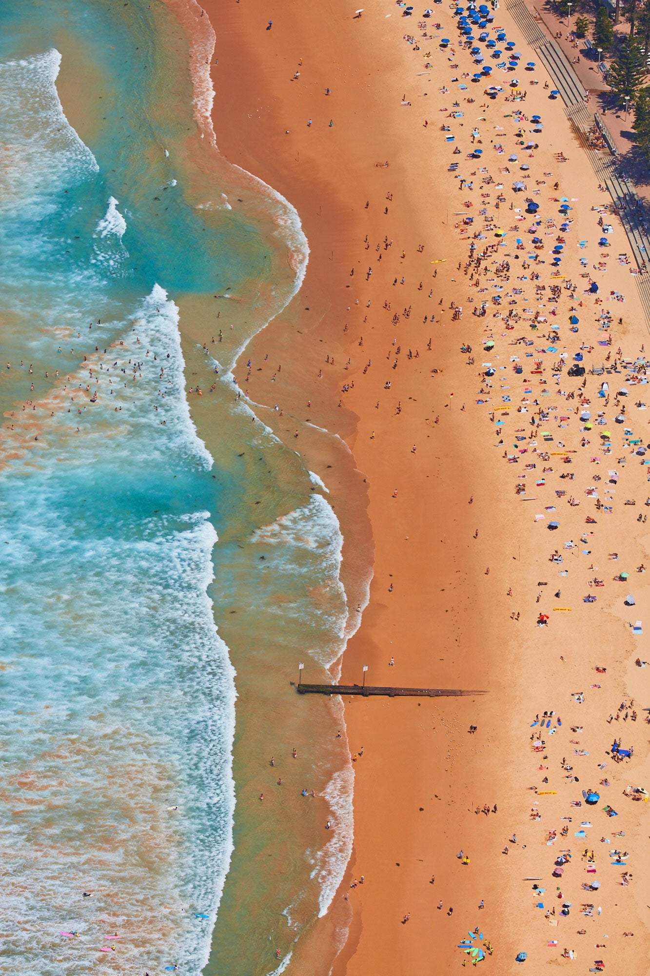Manly Beach, Vertical Print