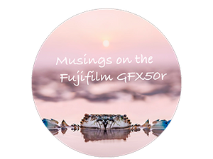 Musings on the Fujifilm GFX50r (vs 50s)