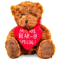 Teddy Bear with Red Heart on Valentine's Day (10 in, Brown) - sparklingselections