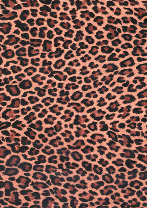 DECOPATCH Paper:Animal Skins 207 Leopard Print - Me Books Asia Store