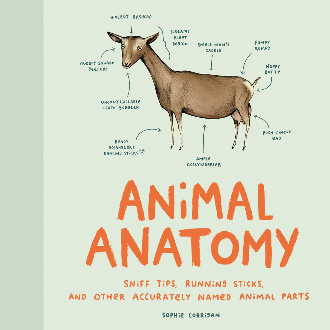 Animal Anatomy - Me Books Asia Store