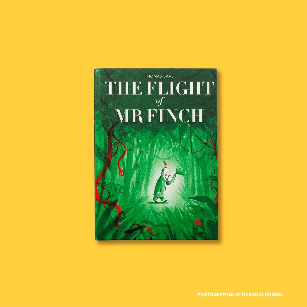 The Flight of Mr Finch - 9781849765909