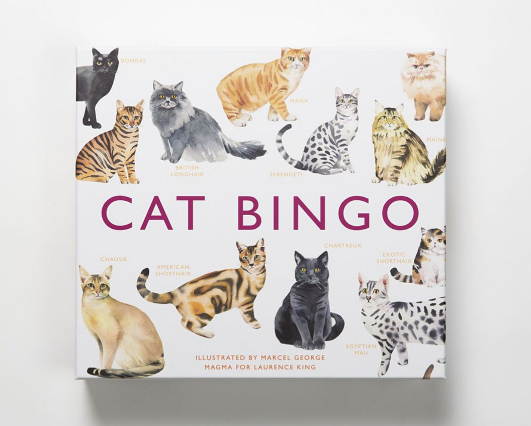 Cat Bingo - Me Books Asia Store