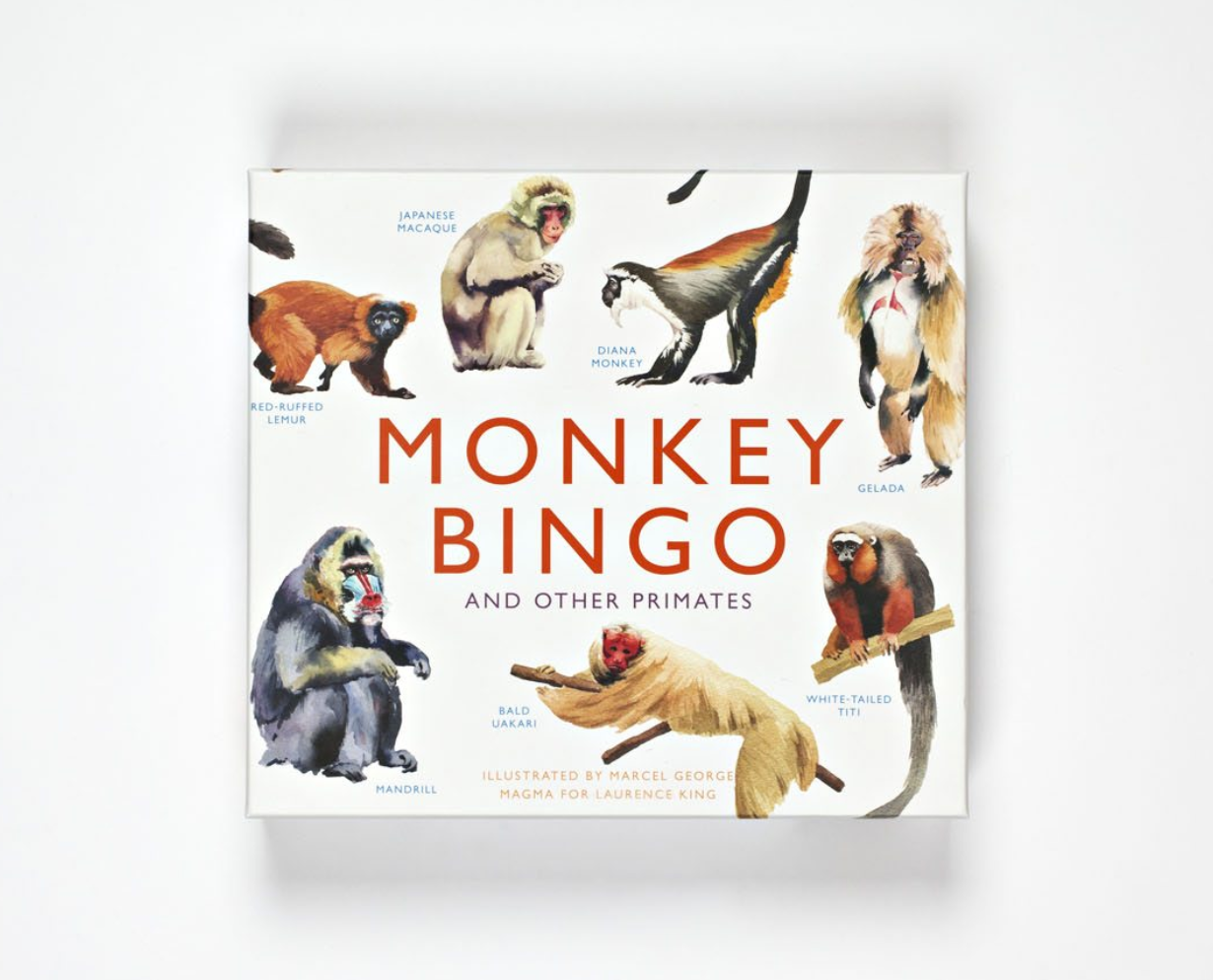Monkey Bingo: And Other Primates - Me Books Asia Store