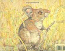 The Lion & the Mouse by Jerry Pinkney - Me Books Asia Store