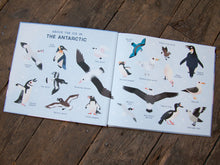 One Day on our Blue Planet: In the Antarctic - Me Books Asia Store
