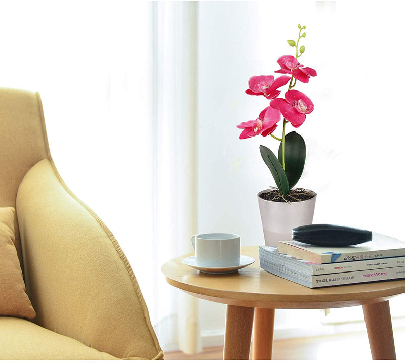 Artificial Orchid with Glass Vase(1 PACK)