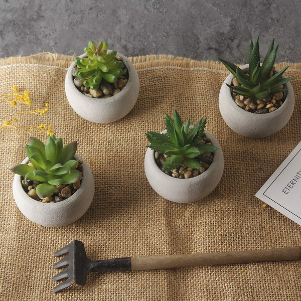 GIA Mini Potted Artificial Succulents/Assorted Decorative Faux Cactus Plants (Set of 4)