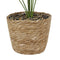 Artificial Plants with Wicker Basket